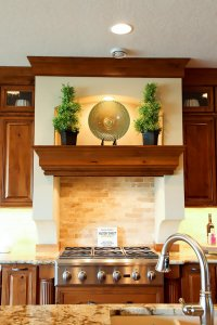 A new stainless steel gas stovetop with a ledge above that has plants on it.